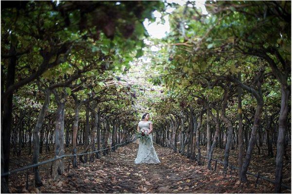 elizabeth-wedding-gowns-marissa-3a